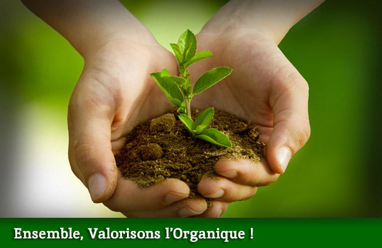 1-ensemble-valorisons-l-organique-le-club-du-retour-a-la-terre